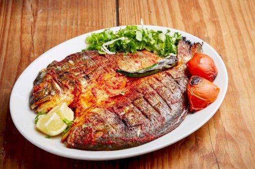 Fish Seabream